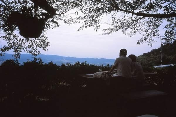 野上弥生子の名言(結婚編)